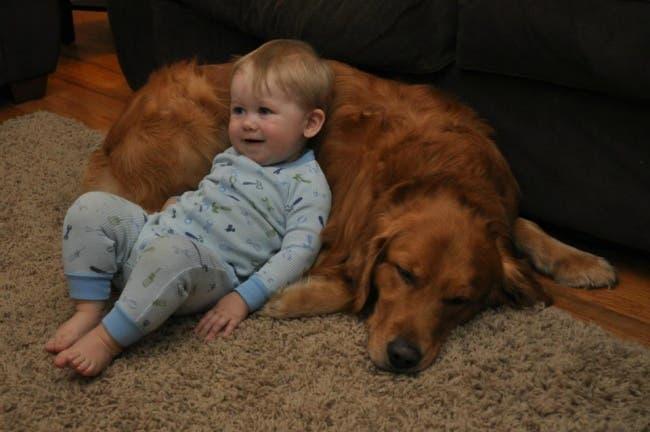 Porque-todos-los-niños-deberian-tener-una-mascota-11