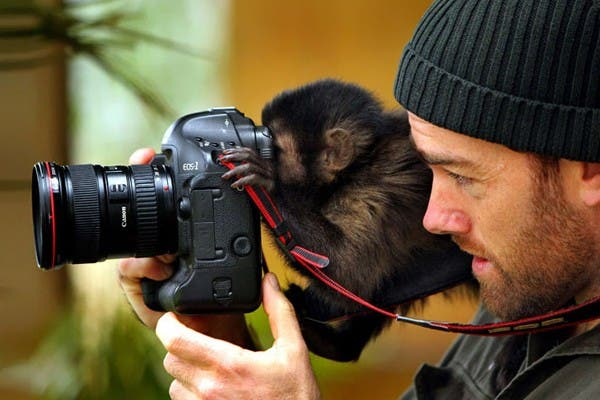 Simpaticos-animales-imitando-fotografos-1