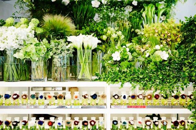azuma-makoto-vespa-en-tienda-de-flores-6