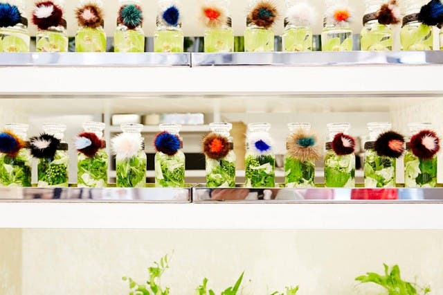 azuma-makoto-vespa-en-tienda-de-flores-8