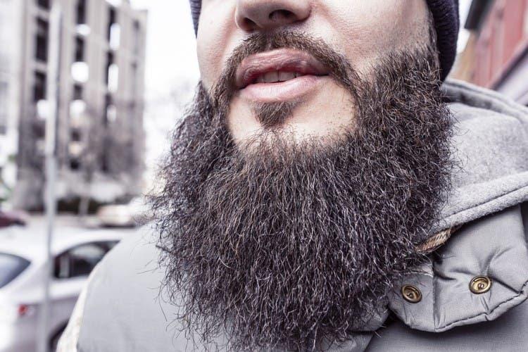 barba bello pubico 2