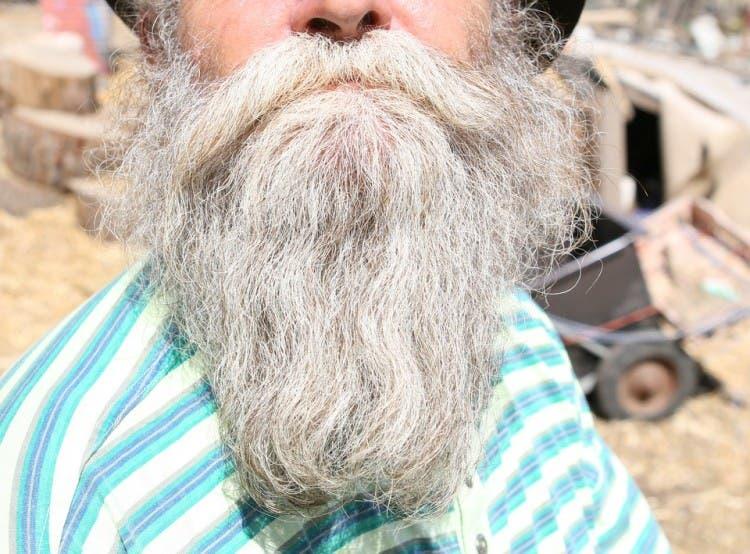 barba bello pubico 4