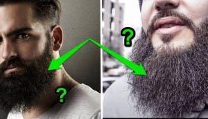 barba bello pubico 5