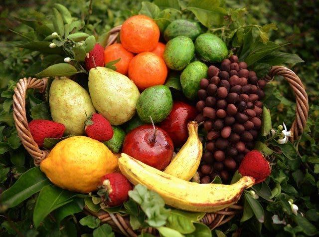 frutas de broma 1