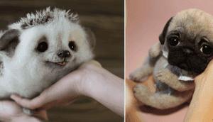 imagen-destacada-animales-de-lana-impresionantes