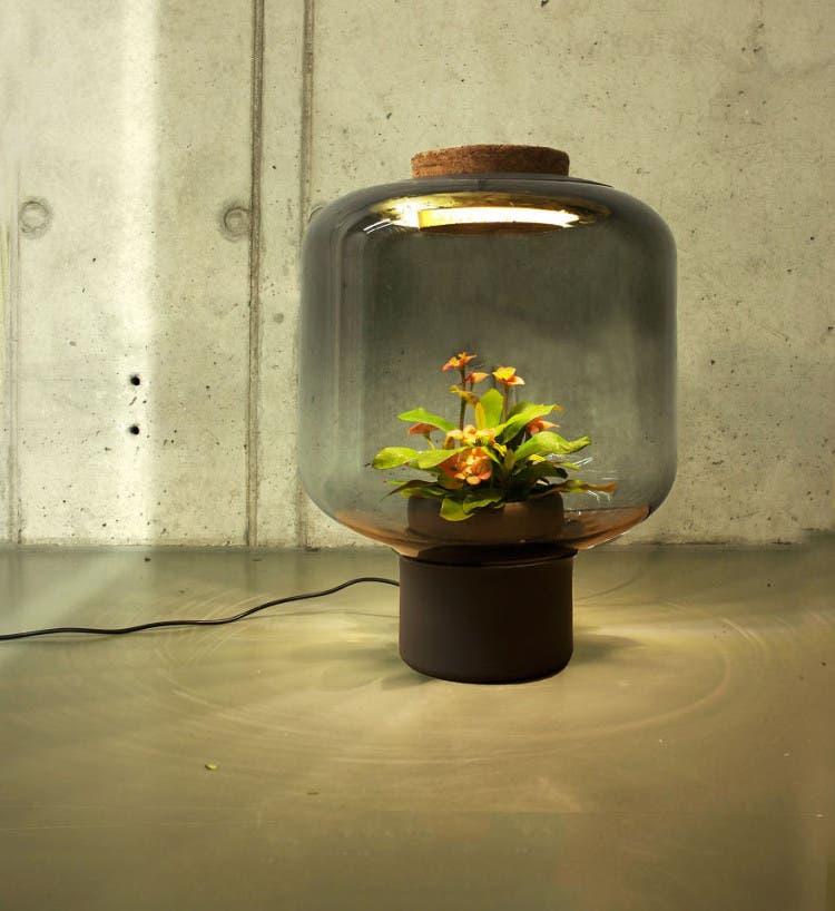 lámparas con plantas 3