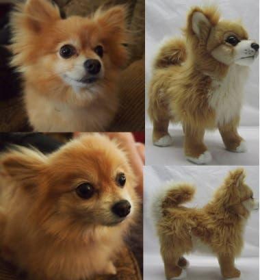 perritos-clonados-en-peluche-16