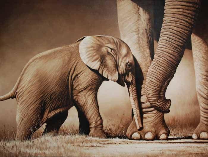 richard-seymonds-arte-realista-animales-salvajes-6