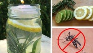 anti mosquitos id 1