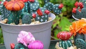 cactus decorativos id