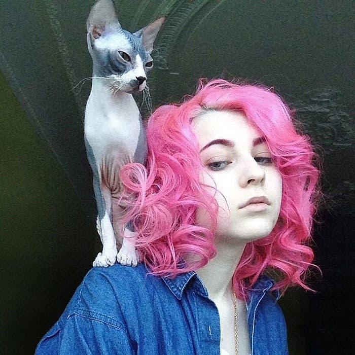 corte sesgado gato arcoiris 5