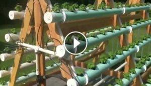 cultivo-vertical-hidroponico-agua-diy-casero