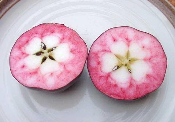 manzanas rosadas 8