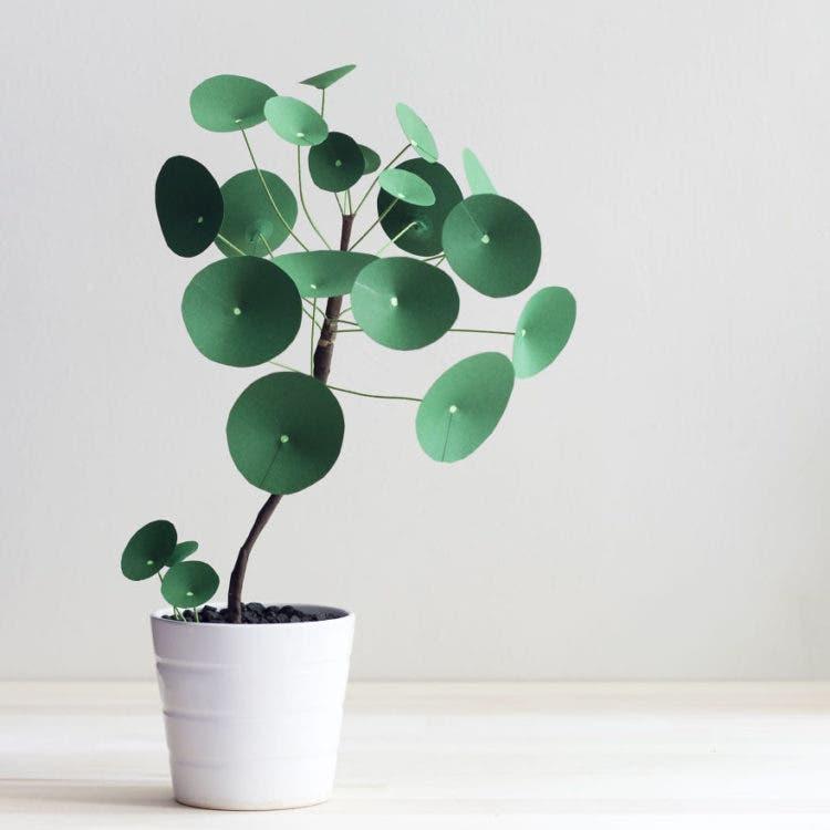 plantas de papel 1