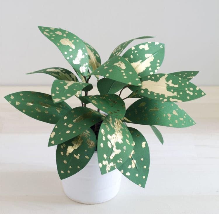 plantas de papel 10