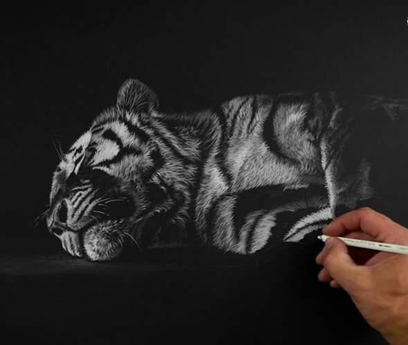 richard-seymonds-arte-realista-animales-salvajes-1098