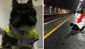 tickles estación de tren 11