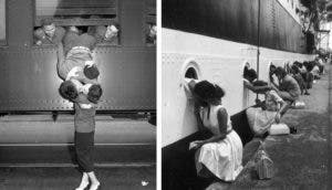 amor en epoca de guerra id