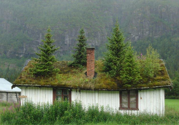 casas escandinavas 6