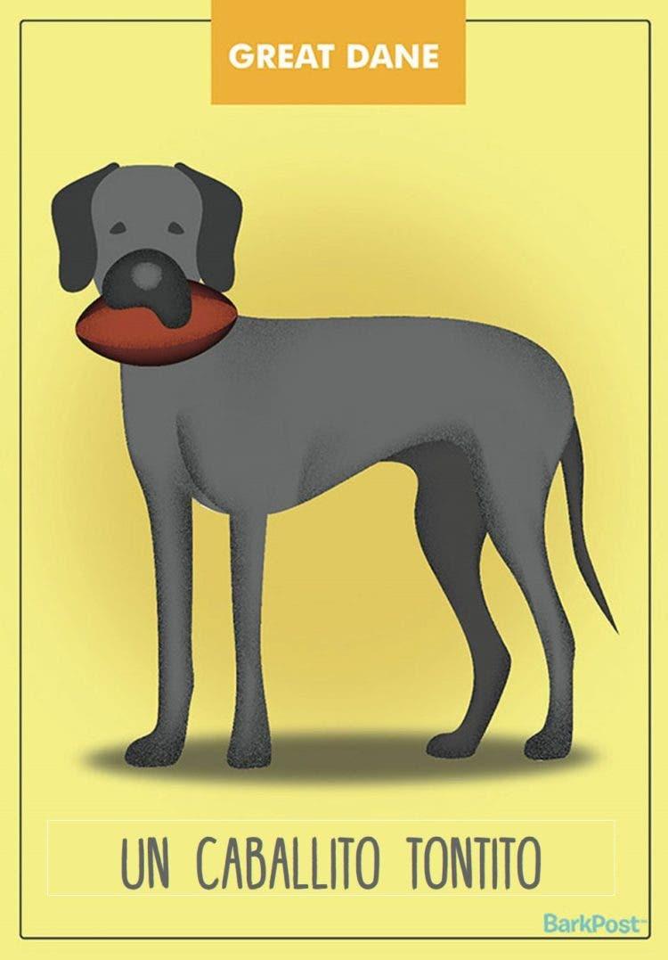 estereotipos-de-perros-7