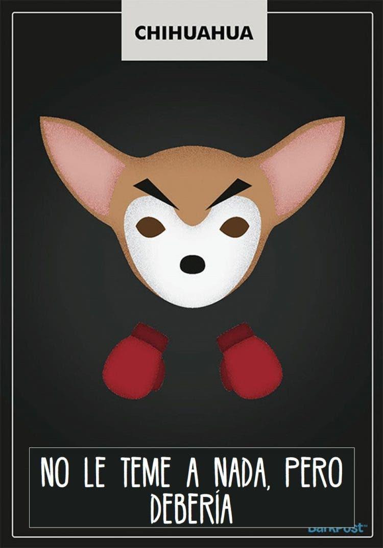 estereotipos-de-perros-8