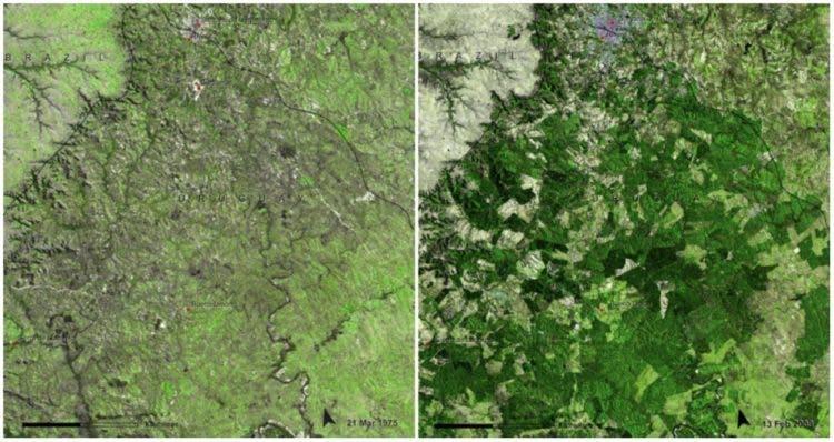 fotos-NASA-la-tierra-antes-ahora-cambio-climatico-real-16