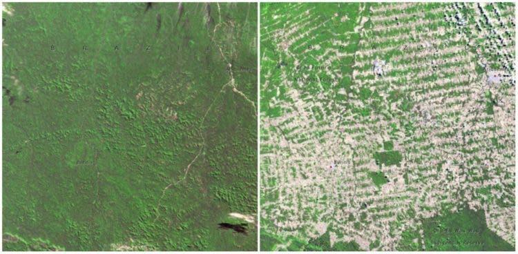 fotos-NASA-la-tierra-antes-ahora-cambio-climatico-real-6