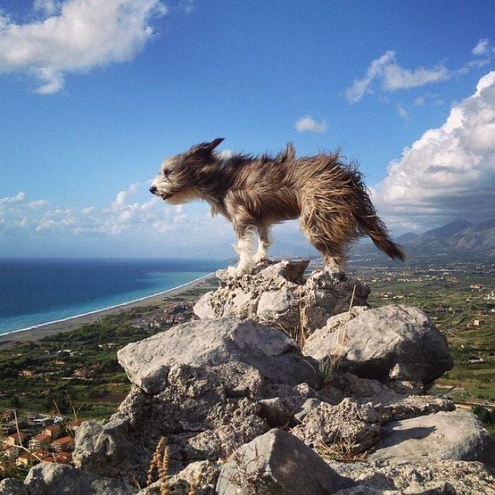 sergi viaje mediterraneo 12