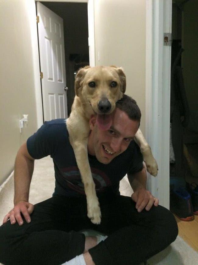 adorables-mascotas-adoptadas-3