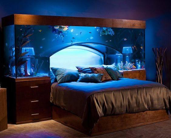 camas divertidas 4