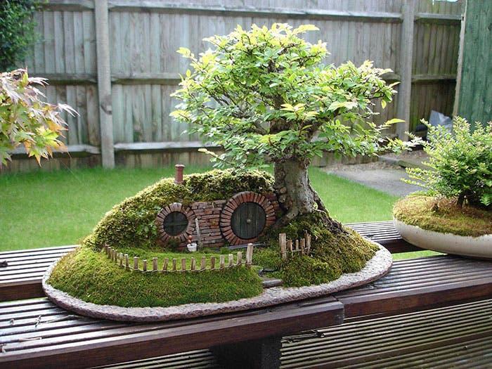 diferentes-unicos-bonsais-arte-japones-cultivar-arboles-miniatura-11