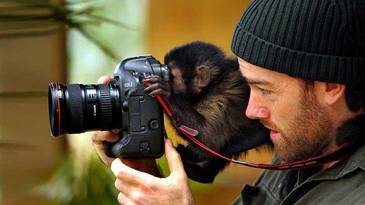 fotografos-sorprendidos-por-los-animales-que-intentan-capturar-1