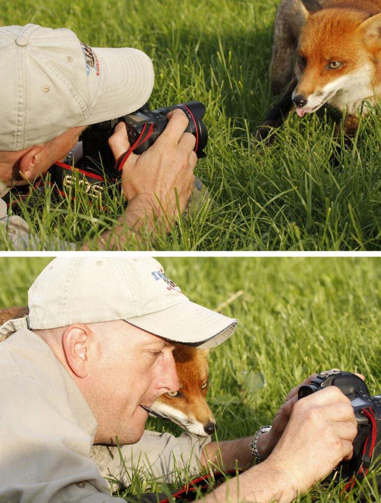 fotografos-sorprendidos-por-los-animales-que-intentan-capturar-10