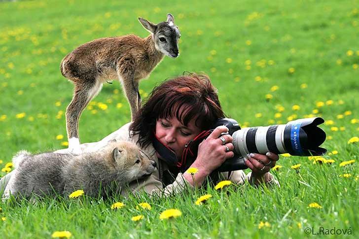 fotografos-sorprendidos-por-los-animales-que-intentan-capturar-12