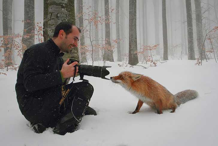 fotografos-sorprendidos-por-los-animales-que-intentan-capturar-13