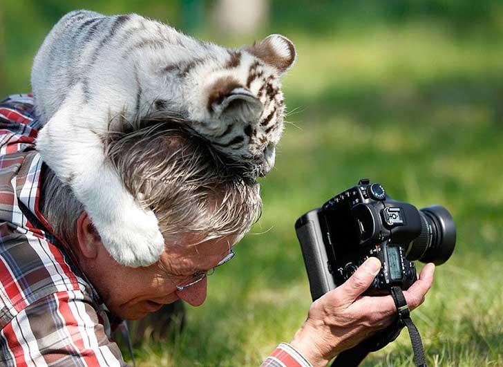 fotografos-sorprendidos-por-los-animales-que-intentan-capturar-15