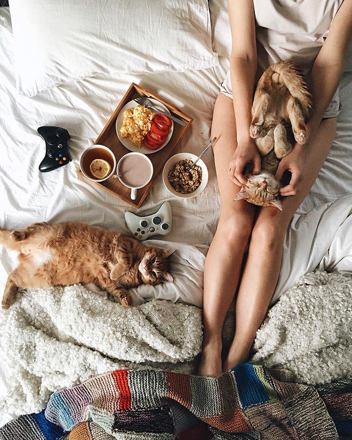gatitos-inseparables-18