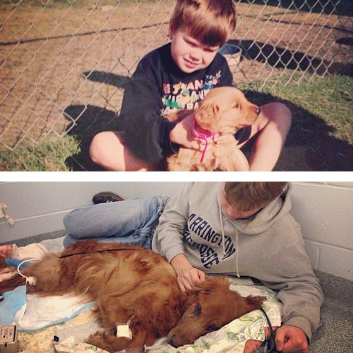 mascotas antes y despues 1