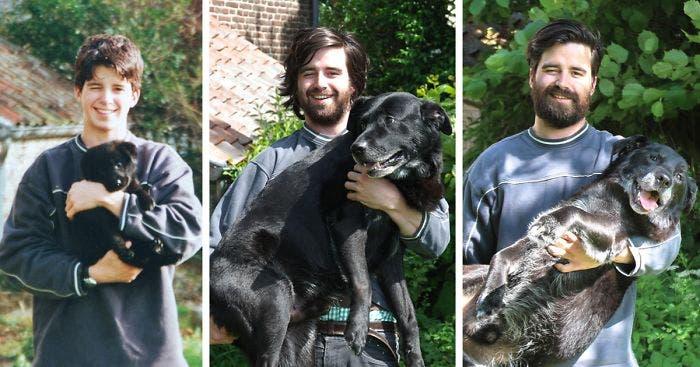 mascotas antes y despues 2