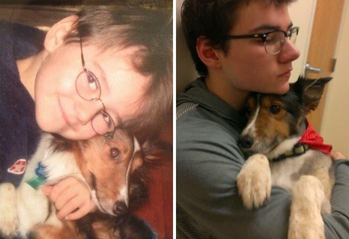 mascotas antes y despues 3