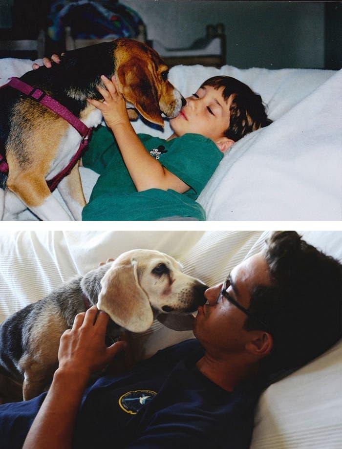 mascotas antes y despues 4