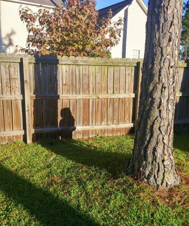 niños escondite 3