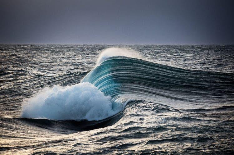olas-geniales-warren