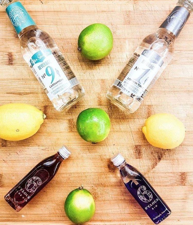 Pasantia-gin-tonic 2