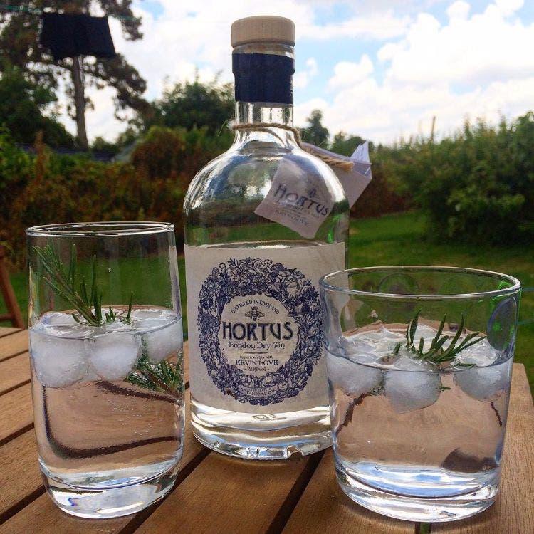 Pasantia-gin-tonic 6