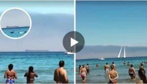 delfines-que-aparecieron-en-cantabria-playa