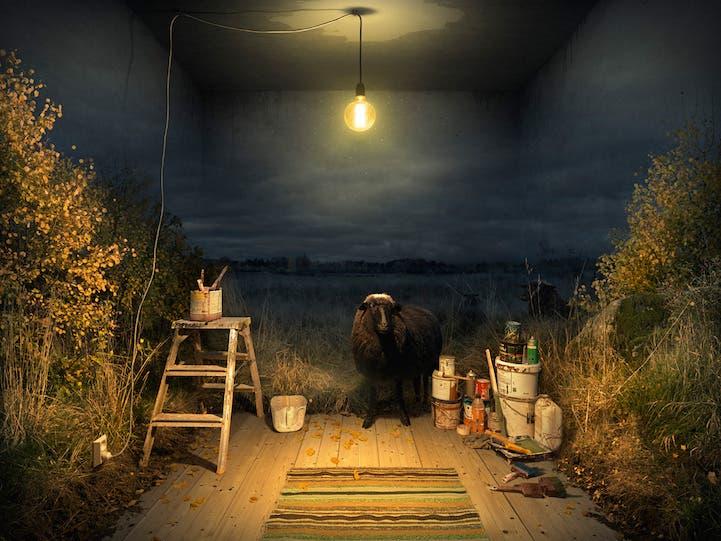 fotografias-surrealistas-desafian-imaginacion-5