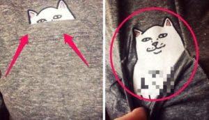 gato-oculto-en-camiseta-mensaje22