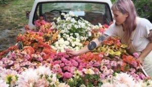 instagram-inspirador-florista