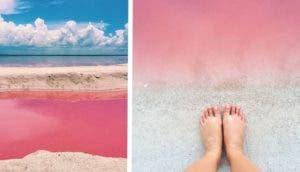 laguna rosa id